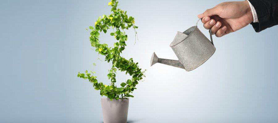 business-grow